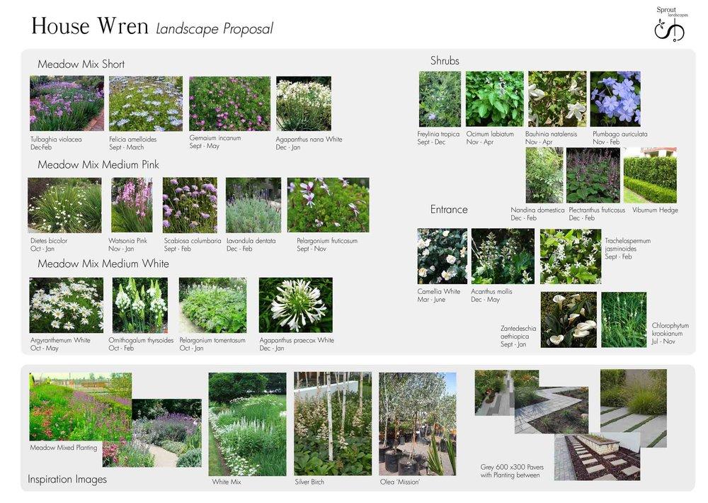 House Wren plant palette 160913 rev2_edited-1.jpg