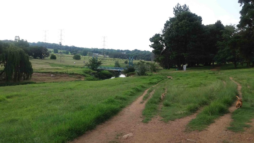 Blue Bridge into Green Belt from Craighall Park