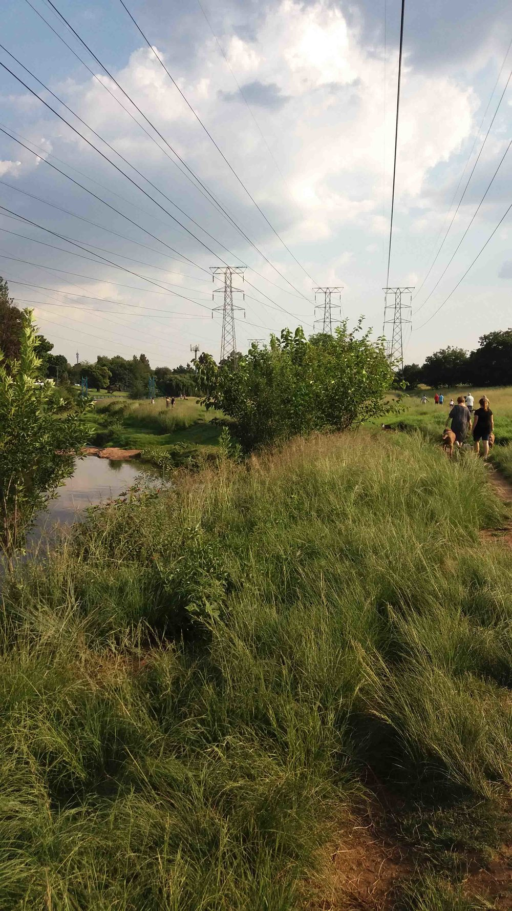 Walkway along Braamfontein Spruit in Green Belt underneath Pylons