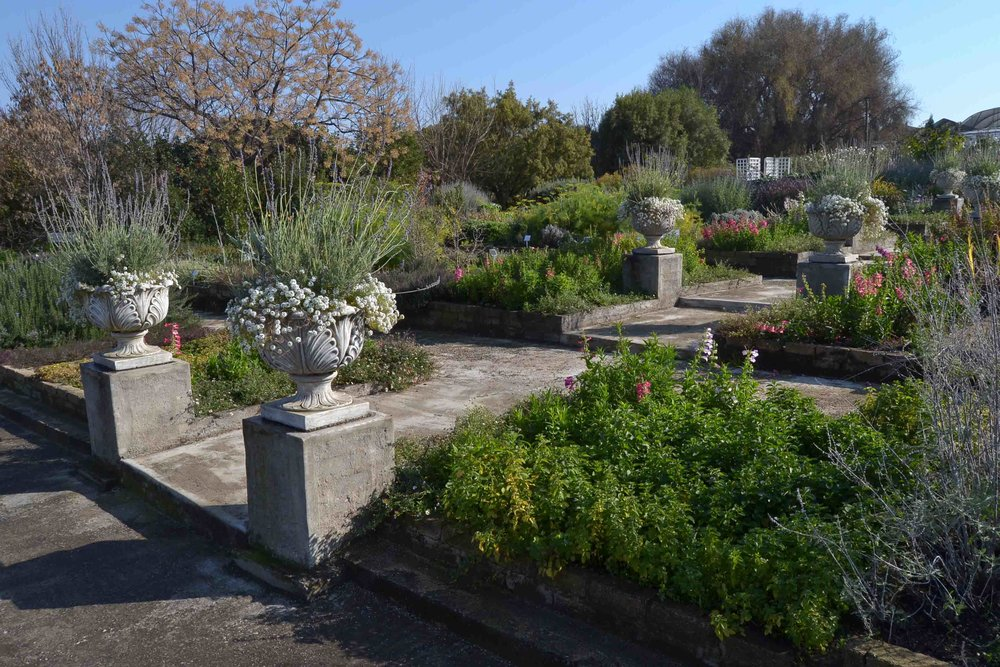 Educational Garden with terraces of herb planting