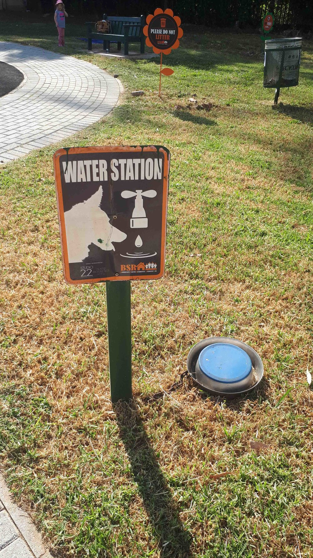 Water Bowls for Dogs visiting the Park