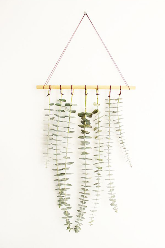 Oh The Sweet Things: DIY Hanging Eucalyptus | Emma Lamb