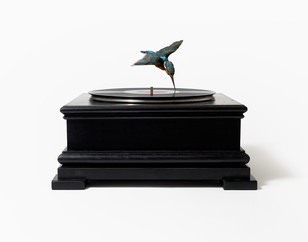 Bird on record player