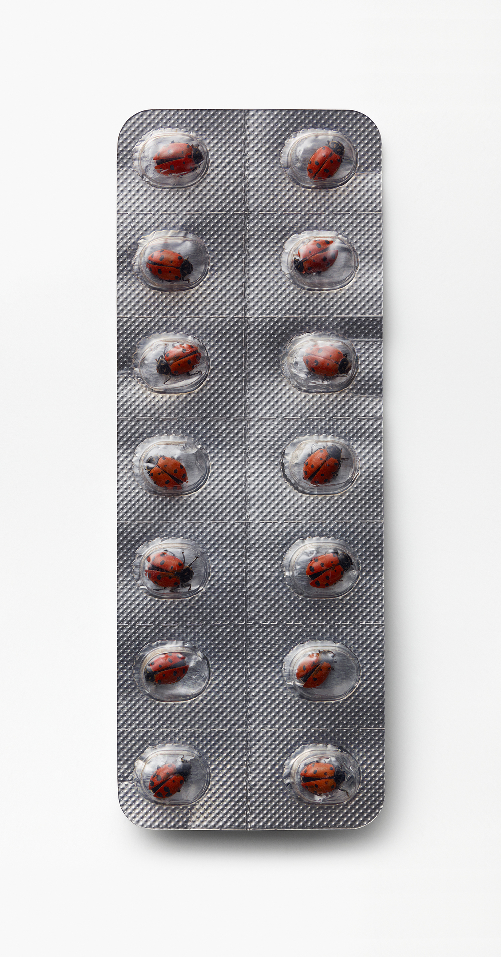 Ladybird Pill Packet