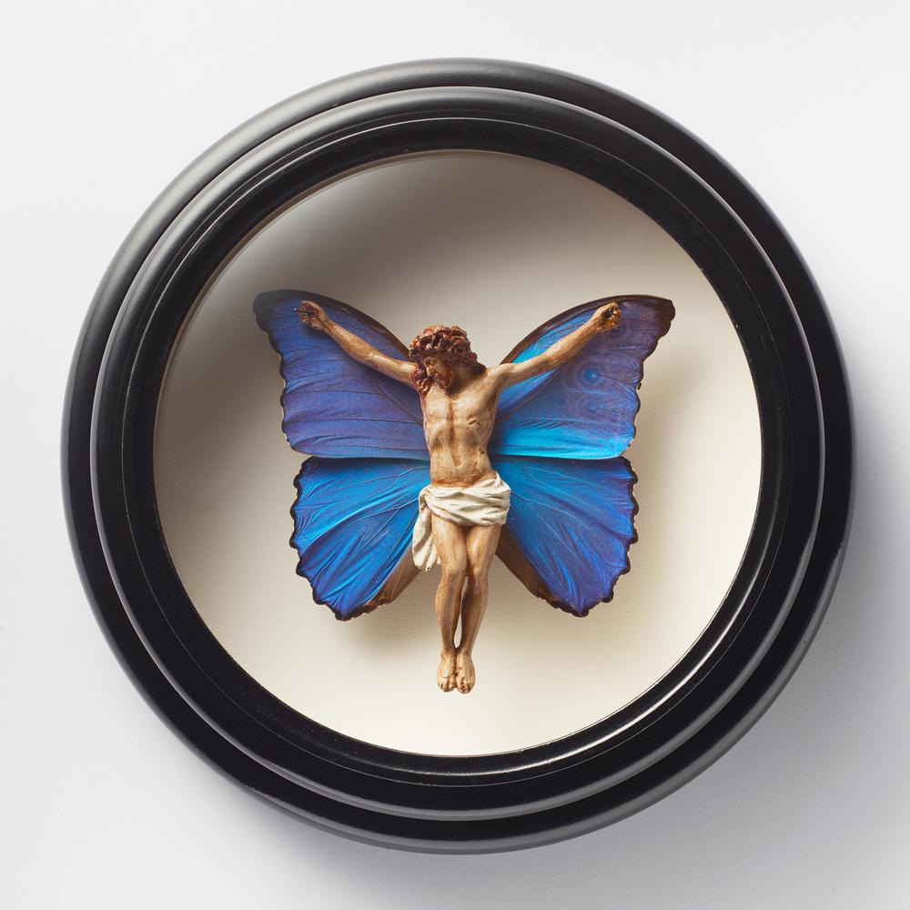 Butterfly Jesus