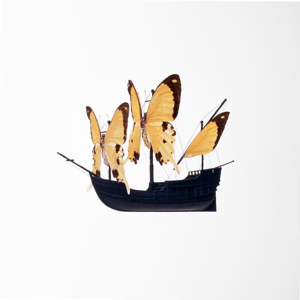 Butterfly Boat