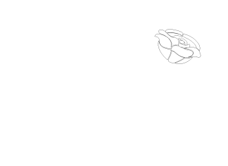 The Rose Charitable foundation