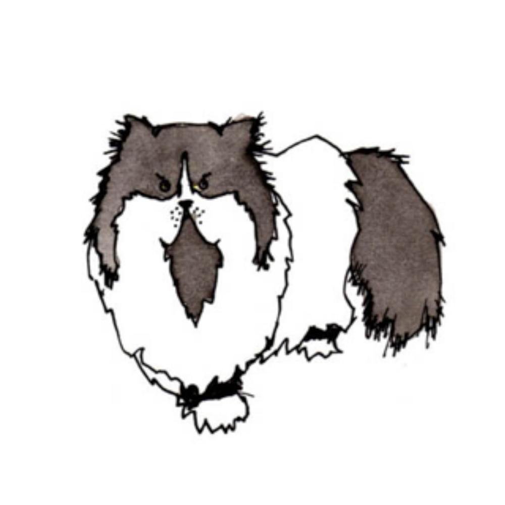 Cat Gang: Susi