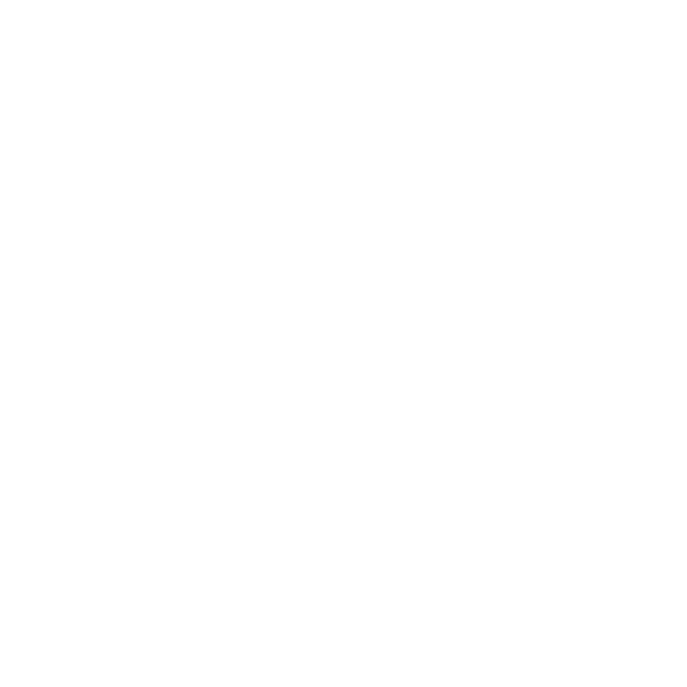 Maine Academy of Modern Music
