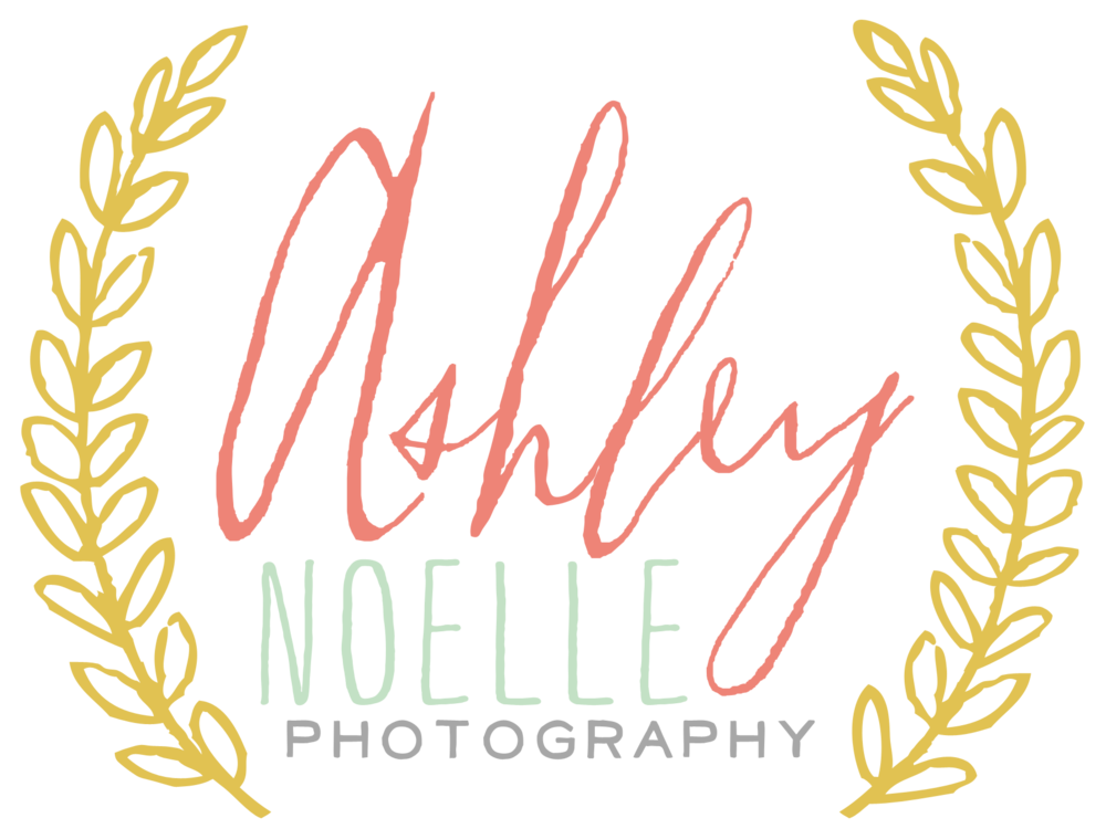 Ashley Noelle Photography
