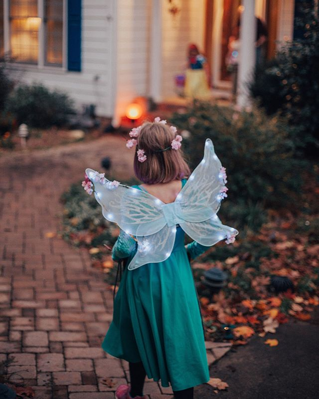 Can't get enough of this kid. 🦋✨🎃