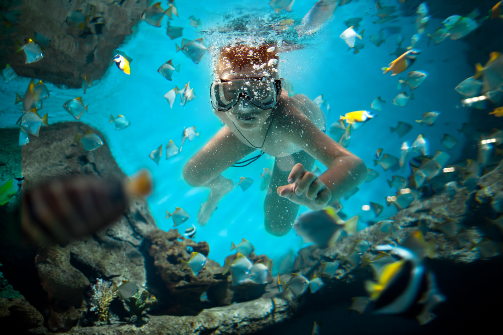 snorkel kid pic.jpg