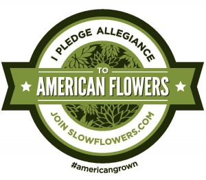 SlowFlowers_Badge_2_colorVector_ALT2-page-001-Copy-300x262.jpg