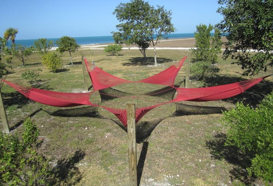 Thea Lanzisero,  Starfish , 2012                                       PLOT at ArtMarket Hamptons, 2014