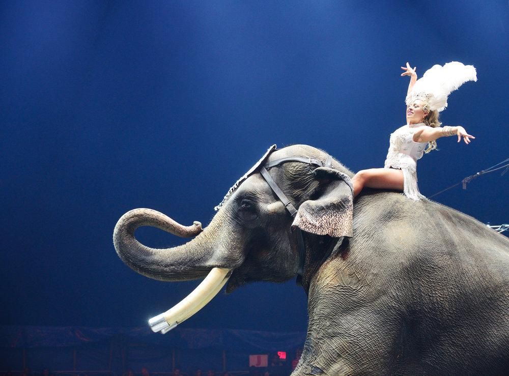 Image via Universoul Circus