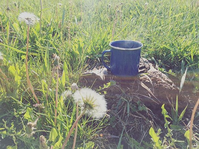 Ahhh... Nothing like fresh, hot coffee in the fresh, cold air. . . . #morningritual #kootenaylife #coffeeforme #camping #kzlife #getoutside #wildandfree #wilderness #homesweethome #homeiswherethemountainsare