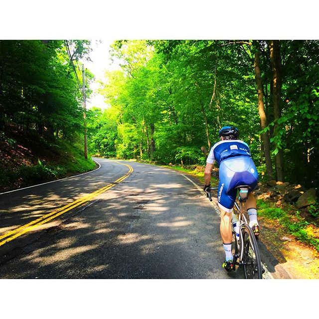 Chasing @cyclocrosstony up Clausland Mountain Road #outsideisfree #roadlessridden #fromwhereiride