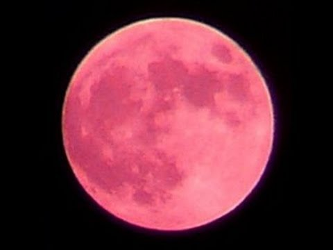 June's Full Moon is known as the Strawberry Moon