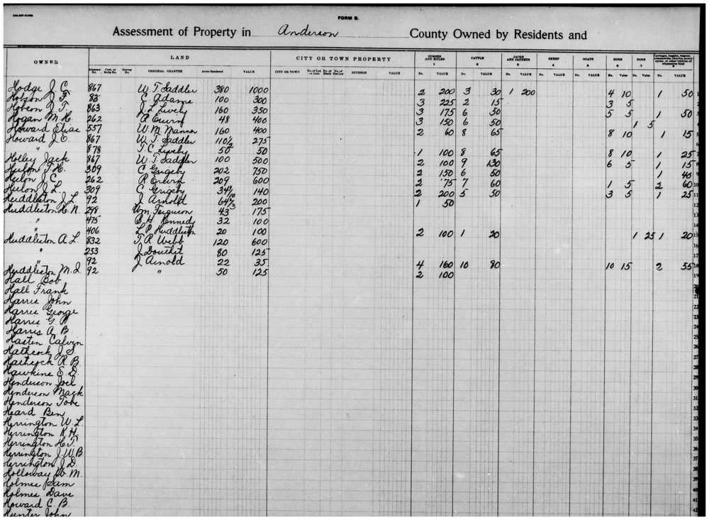 1908 Anderson County Tax Rolls (Line 8 shows Jack Holley's assessment for 100 acres) (Anderson County Records, Thomason Special Collections, Newton Gresham Library, Sam Houston State University, Huntsville, Texas)