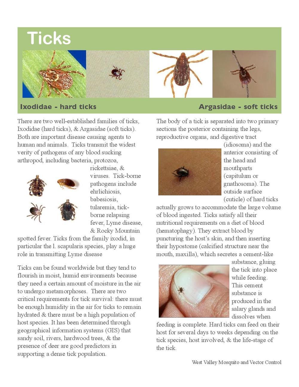 Ticks-page-001.jpg