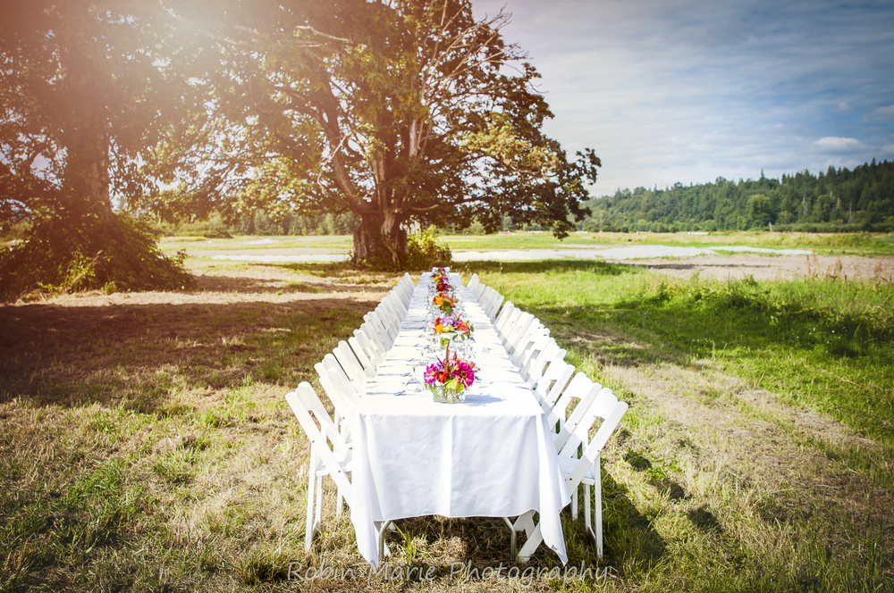 SVT Farm Dinner Table 1- July 2016.jpg