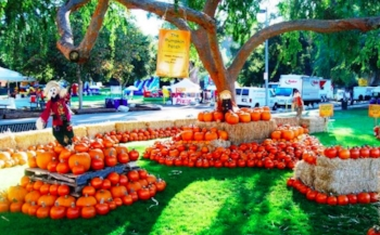 kidspace-pumpkin-festival-featured.jpg