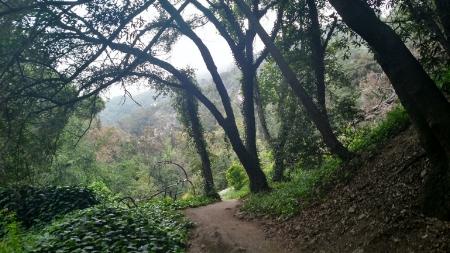 sturtevant-oaks.jpg
