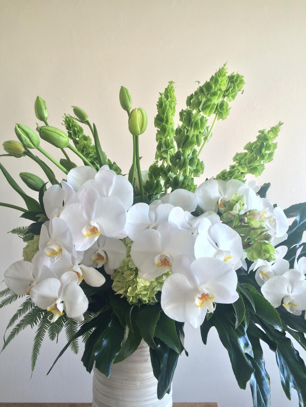 Elegant French Tulips w/phaleanopsis
