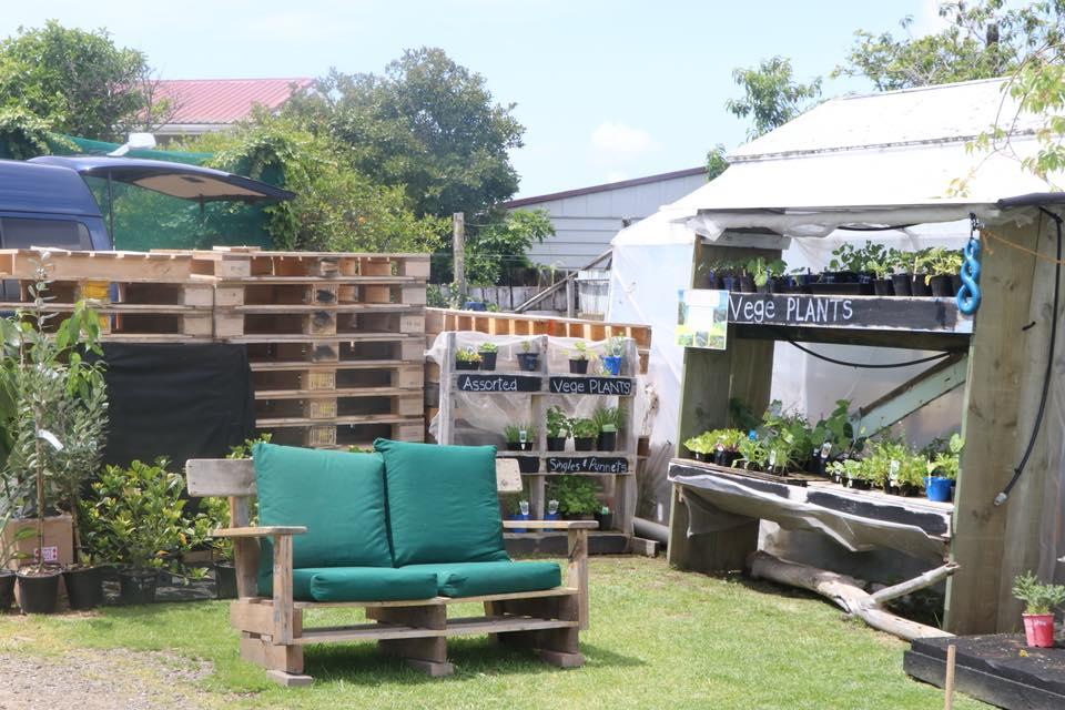 gardenshedpallets.jpg