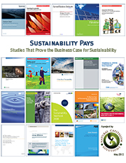 This document is a resource to help you understand how business leaders can profit by integrating sustainability into their strategy.