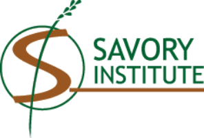 The Savory Institute facilitates the realization of a life of enduring returns for the land and all who depend on it. The Institute is the  brain trust  of the organization. We develop innovative tools and enhanced curricula, inform policy, establish market incentives, increase public awareness, and coordinate relevant research, cultivating relationships with aligned partners.