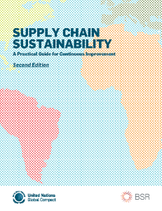 Supply Chain Sustainability: A Practical Guide to Continuous Improvement, developed in collaboration with BSR, can help companies overcome these challenges by offering practical guidance on how to develop a sustainable supply chain programme based on the values and principles of the Global Compact. Featuring numerous examples of good corporate practice, the guide will assist companies in setting priorities for action that will lead to continuous performance improvement.