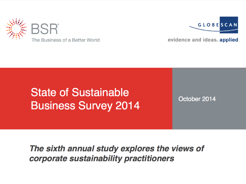 """The annual BSR / GlobeScan """"State of Sustainable Business Survey"""" (now in its sixth year), provides insights into the world of sustainable business and tracks the successes and challenges faced by corporate sustainability professionals."""