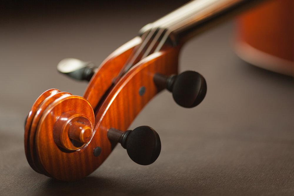 String Arrangements - Quality strings, fast turnover, great prices