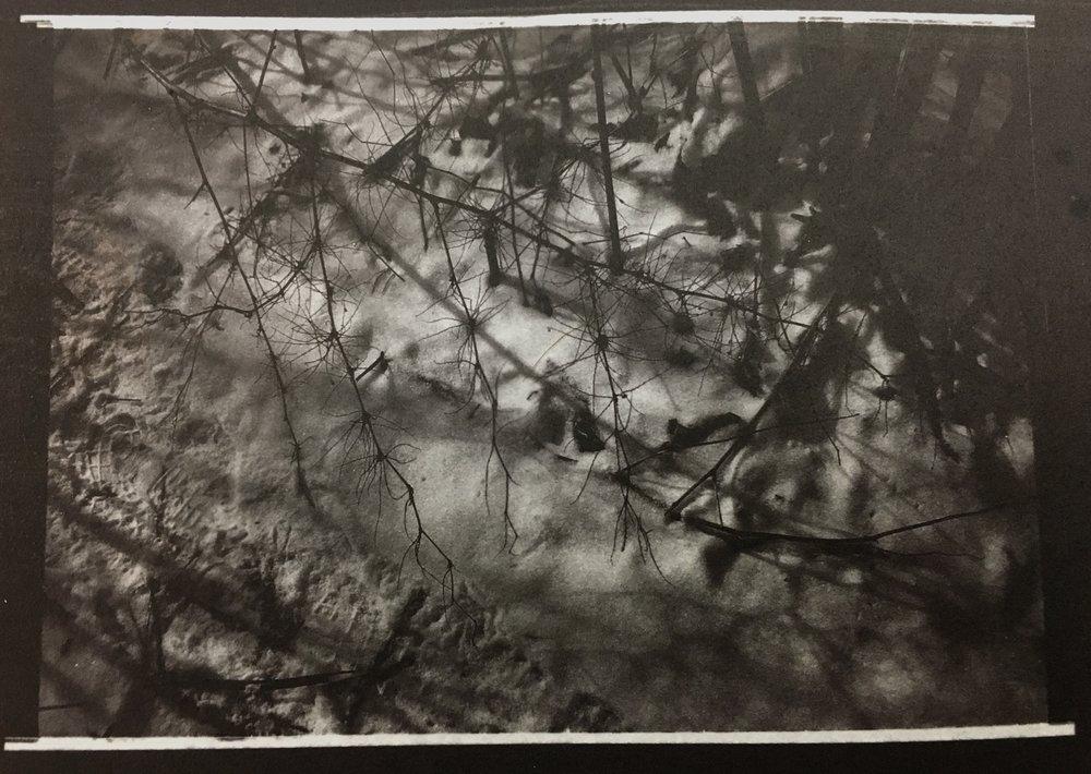 Salt Paper Print