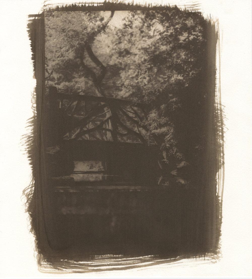 Van Dyke Print