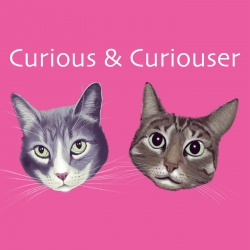 Curious and Curiouser Podcast