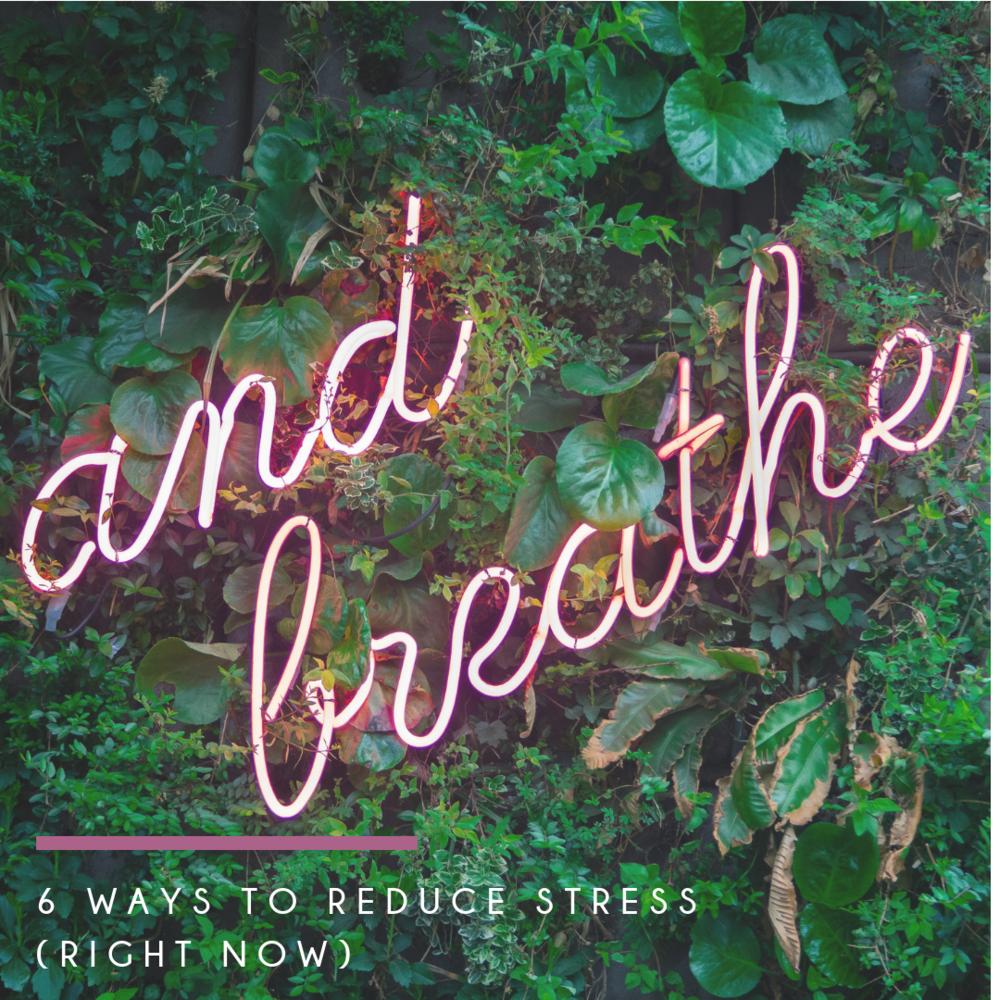 Stress Newsletter.png