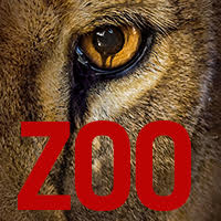 zoo_5.jpg