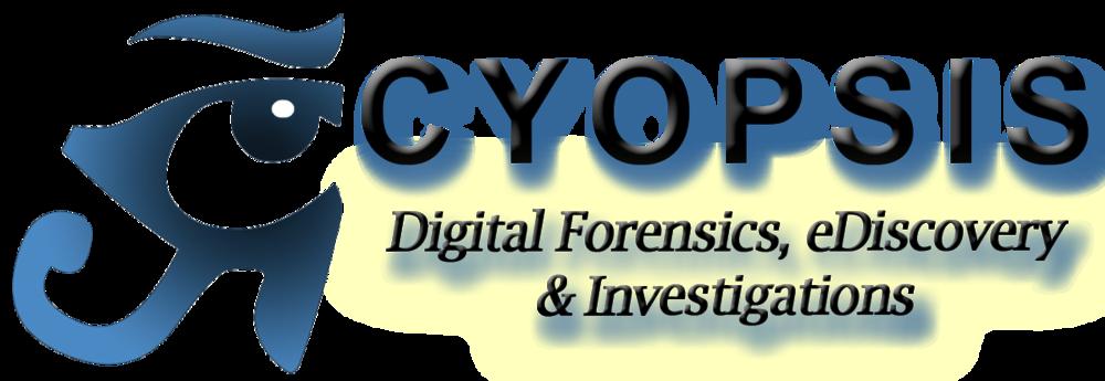 Cyopsis logo Services & web 110613v2_edited-5.png