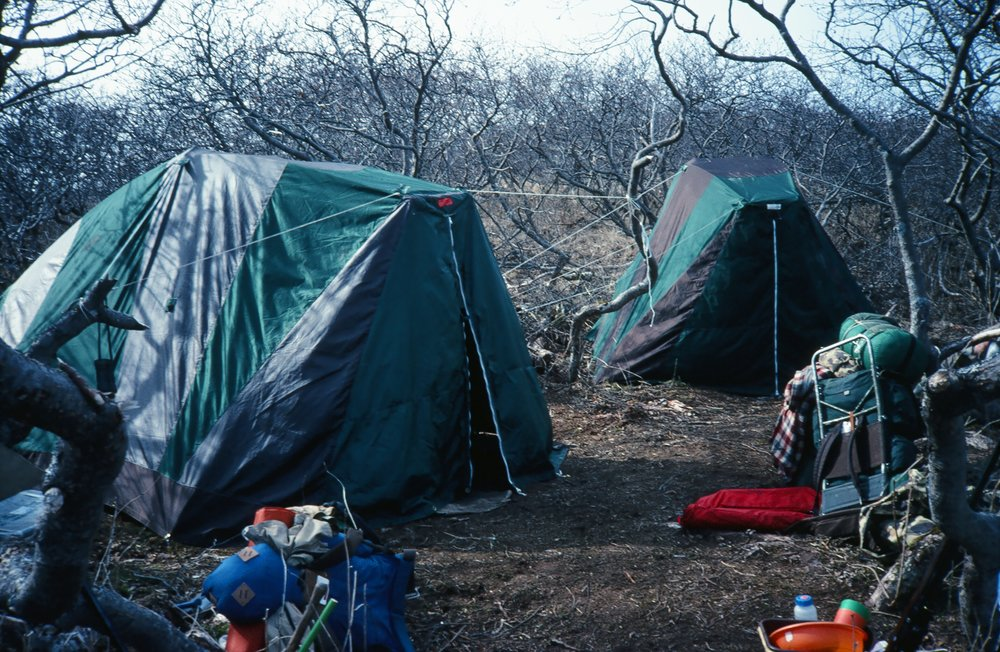 "We called this camp ""Alderville"". It was 3 miles inland.  We air dropped the tents and back packed everything else in and then had to pack everything, including the tents, out at the end of the season."