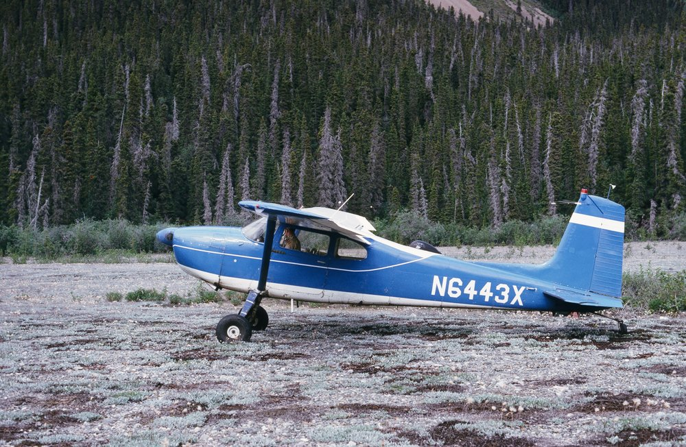 Jim Edwards of Chitina Air Service in the Cessna 180 as he takes off from the small bush strip.