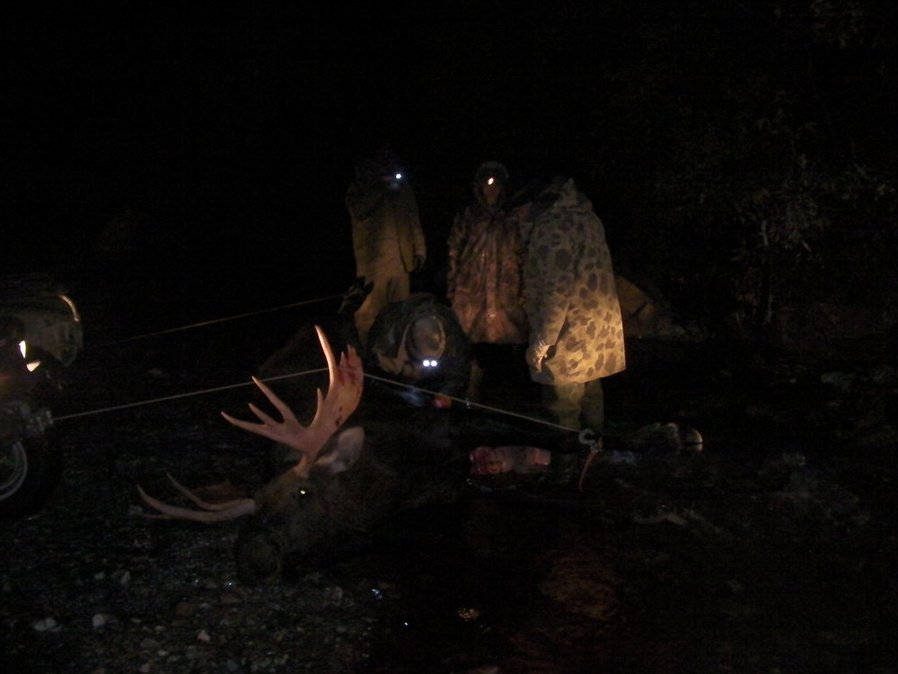 Butchering the moose by the headlights of the four wheelers and our headlamps.
