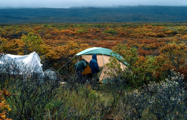 Our camp. We used a 4-man Eureka Draw-Tite tent that my wife had purchased as a gift for me from Barney's Sports Chalet in the mid-70's. As you can see it had a bad rain fly for the rainy Alaska weather.