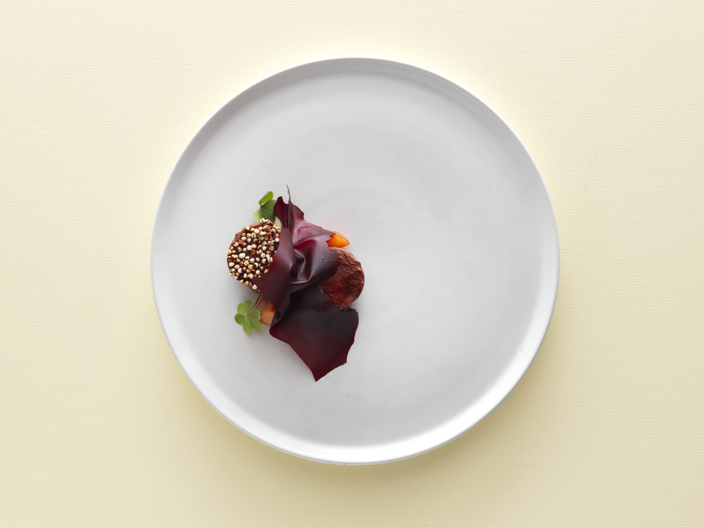 venison - beetroot - coffee - red fruits - amaranth.jpg