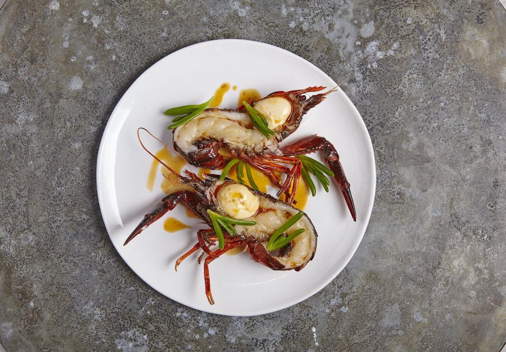 Grilled WA marron with sea bananas - CIRRUS.jpg