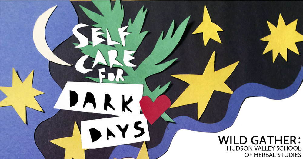 If you missed the first offering of this workshop, here's another chance to attend! The days are darker, nights longer and shit's been so real, y'all. In this intimate and interactive workshop we'll gather to discuss how we can support our selves, bodies and spirits in the dark days. We'll focus on common ailments and herbal allies for this time of year seasonally, politically, physically, emotionally. We'll also make space to break down why it's so damn hard to take care of ourselves sometimes. Folks will go home with a special remedy we've made in class together.  RSVP to wildgather@gmail.com. We're non binary and ask you to come and do you. Heads up, this workshop will include the burning of things like plants and incenses. Sliding scale $25-55. Location:  Artemisia Project Space Sarah Falkner Healing Arts 84 Green St #2 Hudson, NY thank you to our dear friend and former student, Alexander West Guerrero, for this beautiful flyer!