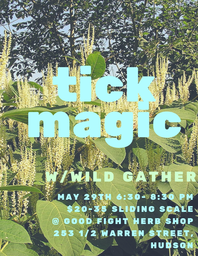 join    Wild Gather    for a night of herbal first aid useful for living in tick city. we'll share our tools and tricks for prevention and acute situations, as well as discuss energetic boundaries and protection. SPACE IS LIMITED, so please rsvp to goodfightherbco@gmail.com.