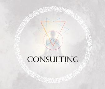SO-WIDGET-CONSULTING