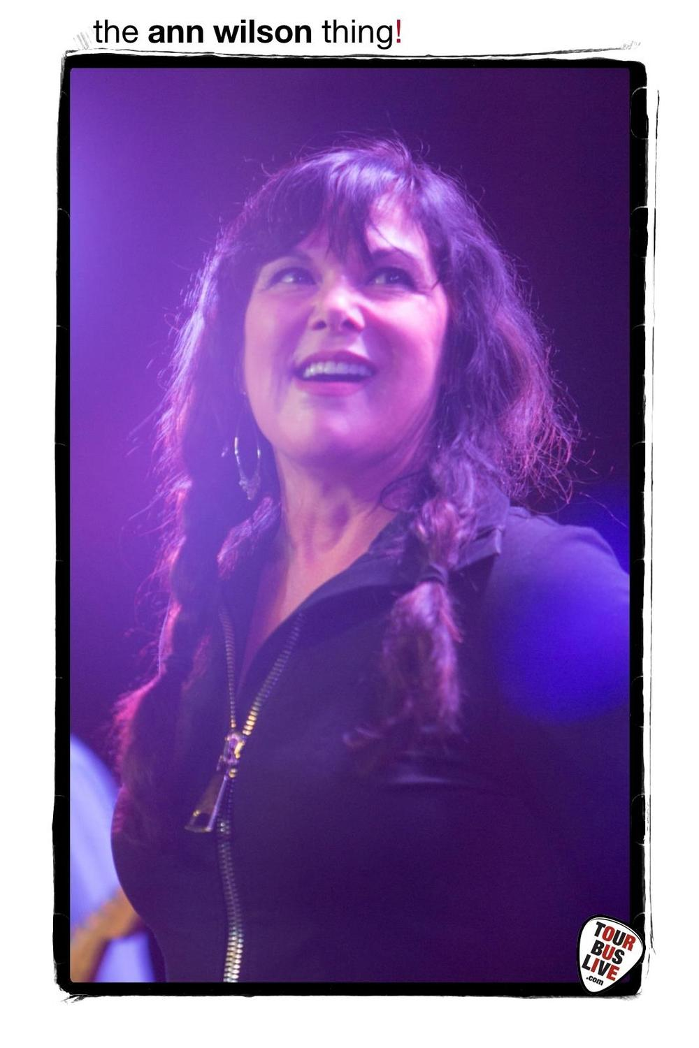 Ann wilson beauty